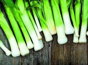 Le légume du mois : le poireau