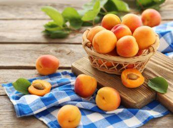 Le fruit du mois : l'abricot